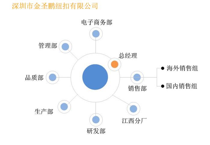 金圣鹏公司结构